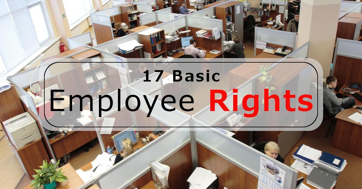 17 basic employee rights